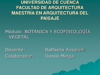 UNIVERSIDAD DE CUENCA FACULTAD DE ARQUITECTURA MAESTRÍA EN ARQUITECTURA DEL PAISAJE