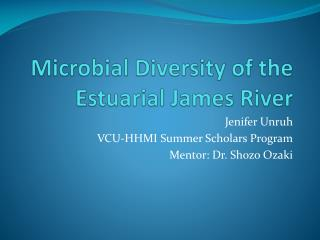 Microbial Diversity of the Estuarial James River