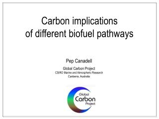 Carbon implications  of different biofuel pathways