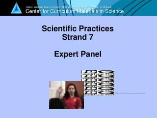 Scientific Practices Strand 7 Expert Panel