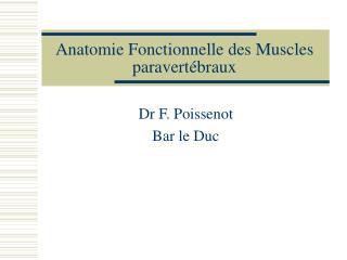 Anatomie Fonctionnelle des Muscles paravertébraux