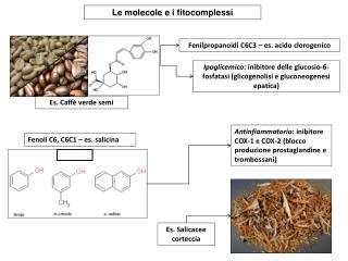 Le molecole e i fitocomplessi