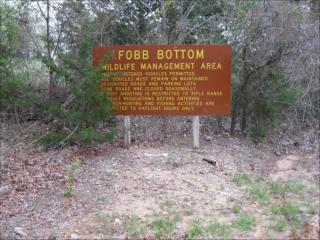 Fobb Bottom entry road through low lying marshy area