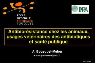 Antibior sistance chez les animaux, usages v t rinaires des antibiotiques et sant  publique
