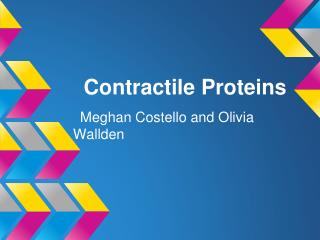 Contractile Proteins