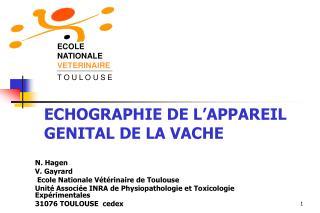 ECHOGRAPHIE DE L'APPAREIL GENITAL DE LA VACHE