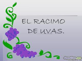 EL RACIMO    DE UVAS.
