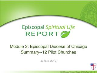 Module 3: Episcopal Diocese of Chicago Summary--12 Pilot Churches