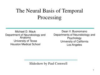 The Neural Basis of Temporal Processing