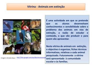 Vitrina - Animais em extin��o