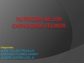 Nutrición  de  los Carnívoros Felinos