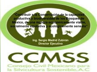 Ing. Sergio Madrid Zubirán Director Ejecutivo