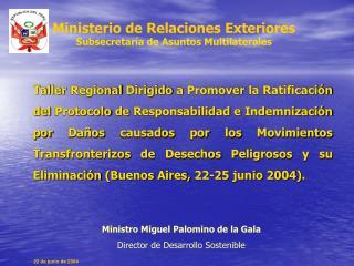 Ministerio de Relaciones Exteriores Subsecretaría de Asuntos Multilaterales