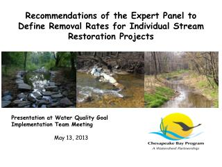 Recommendations of the Expert Panel to Define Removal Rates for Individual Stream Restoration  Projects