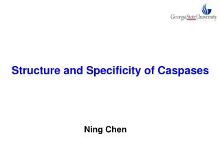 Structure and Specificity of Caspases