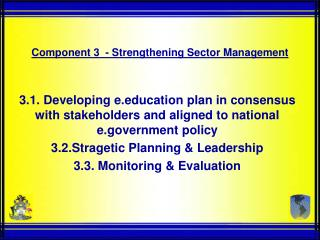 Component 3  - Strengthening Sector Management