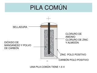 PILA  COMÚN
