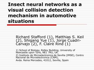 Insect neural networks as a visual collision detection mechanism in automotive situations