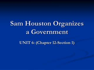 Sam Houston Organizes  a Government