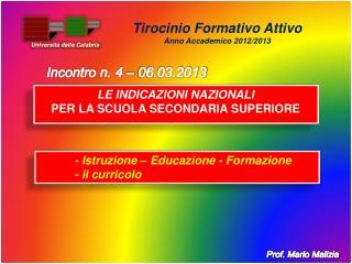 Prof. Mario Malizia