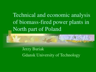 Technical and economic analysis of biomass-fired power plants in North part of Poland