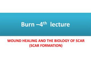 Burn –4 th lecture
