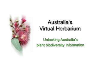 Australia's  Virtual Herbarium