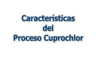 Características del Proceso Cuprochlor