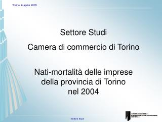 Settore Studi Camera di commercio di Torino Nati-mortalità delle imprese  della provincia di Torino nel 2004