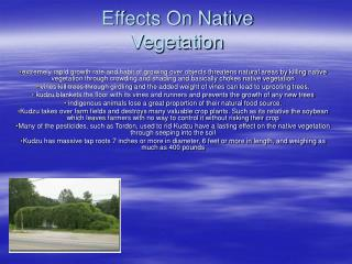 Effects On Native Vegetation