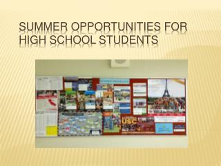 Summer Opportunities for High School Students
