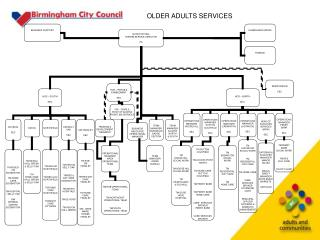 OLDER ADULTS SERVICES