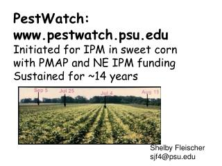 PestWatch: www.pestwatch.psu.edu Initiated for IPM in sweet corn with PMAP and NE IPM funding Sustained for ~14 years