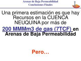 Arenas de Baja Permeabilidad Conclusiones Finales Una primera estimación es que hay Recursos en la CUENCA NEUQUINA por
