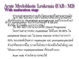 ท่านจะสามารถพบการเติบโตของเซลล์ในสายแกรนูลโลซัยท์ตั้งแต่ระยะ  Myeloblast promyelocyte  จนถึงระยะตัวแก่ ซึ่งก็คือ นิวโท