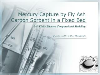 Mercury Capture by Fly Ash Carbon Sorbent in a Fixed Bed