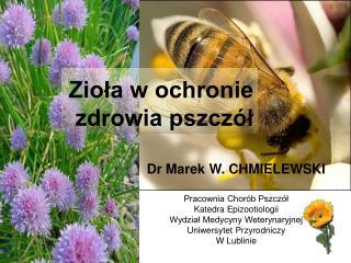 Zioła w ochronie zdrowia pszczół