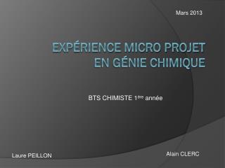 Expérience micro projet en génie chimique