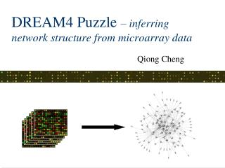DREAM4 Puzzle  – inferring network structure from microarray data