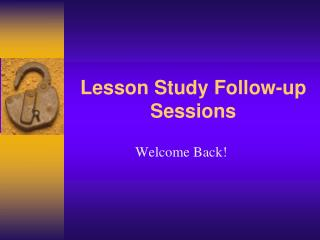 Lesson Study Follow-up Sessions