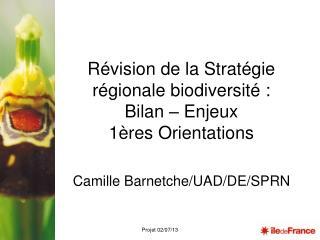 Révision de la Stratégie régionale biodiversité : Bilan – Enjeux  1ères Orientations