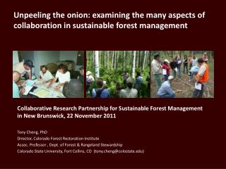 Unpeeling the onion: examining the many aspects of collaboration in sustainable forest management