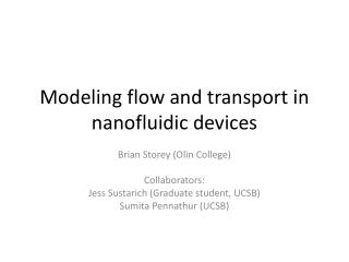 Modeling flow and transport in  nanofluidic  devices
