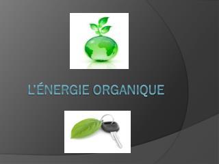 L'énergie organique