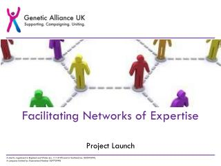 Facilitating Networks of Expertise