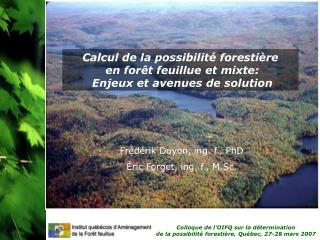 Calcul de la possibilité forestière  en forêt feuillue et mixte:  Enjeux et avenues de solution