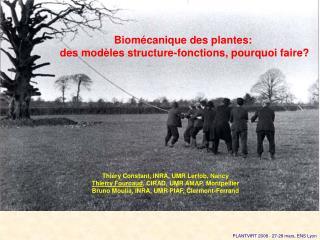 Biom�canique des plantes:  des mod�les structure-fonctions, pourquoi faire?