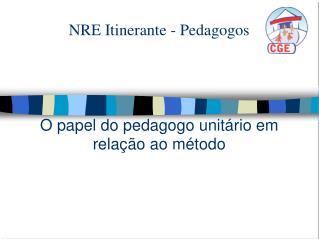 NRE Itinerante - Pedagogos