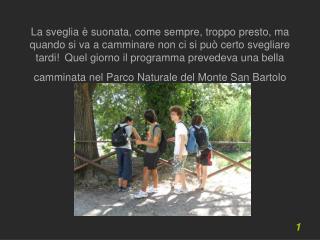 Partendo dalla Baia Flaminia abbiamo raggiunto la cima del monte S. Bartolo, lì abbiamo sostato per riposare e rifocill