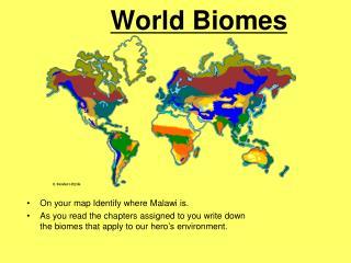 World Biomes